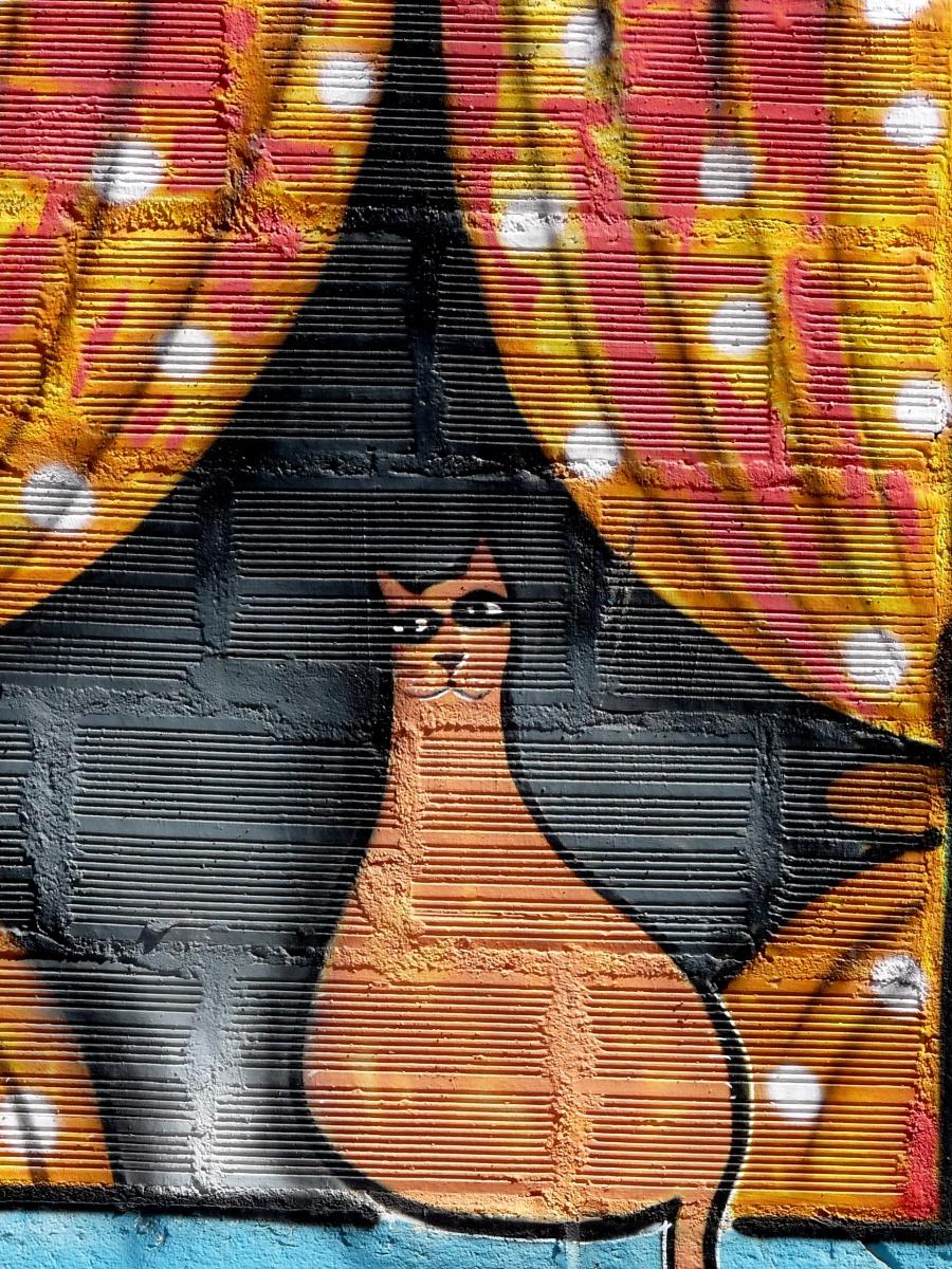Hello cat Urban art Portimão